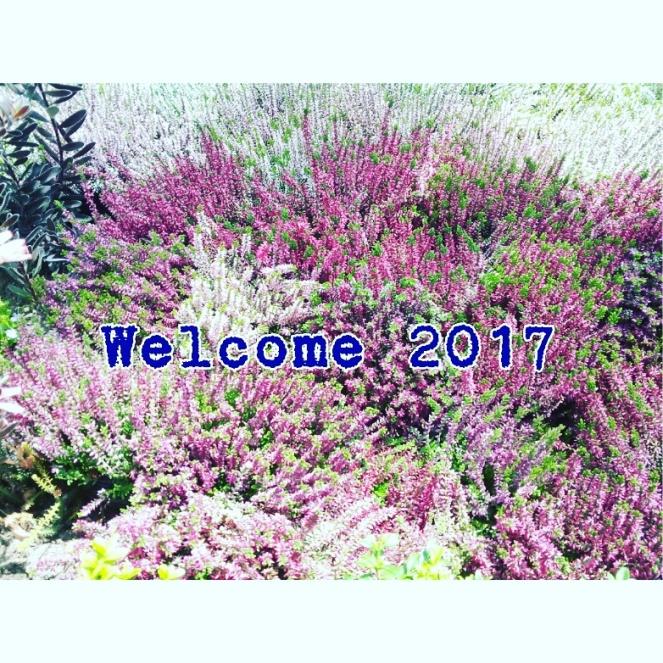 img_20170101_085552